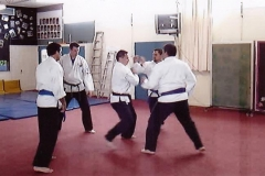 Northland Kenpo Karate Black Belt Grading October 2008. Paired Up Yellow Belt Kata Short Form One
