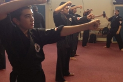 2013-December-kenpo-and-miscellaneous-119