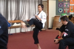 2013-December-kenpo-and-miscellaneous-123