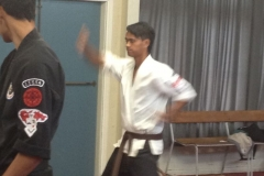 2013-December-kenpo-and-miscellaneous-134