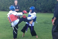 2013-December-kenpo-and-miscellaneous-225