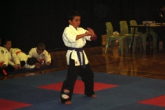Wellington Kenpo Tournament (9)